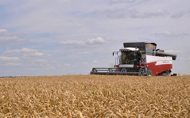 В Брасовском районе планируют удвоить производство зерна