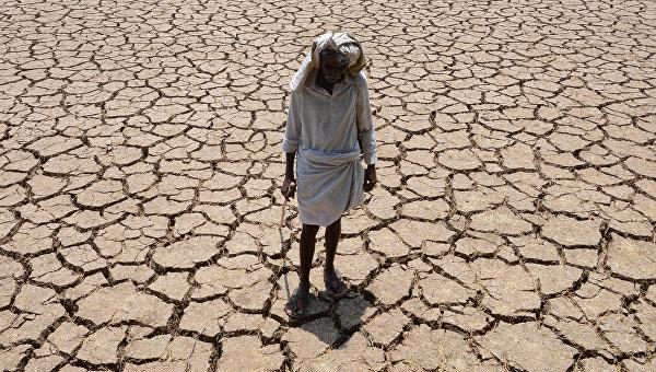 От жары в штате Телангана в Индии погибло 219 человек