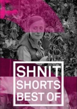Best of Shnit: Игровое кино