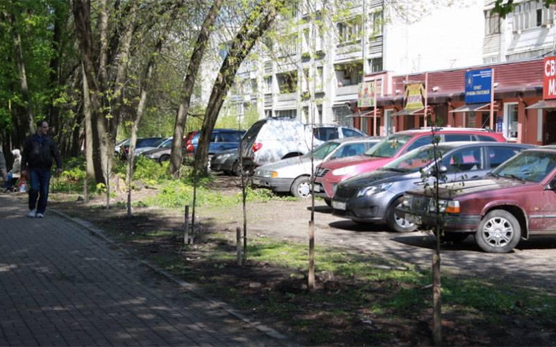 ВБрянске врамках компенсационного озеленения высадили клены илипы