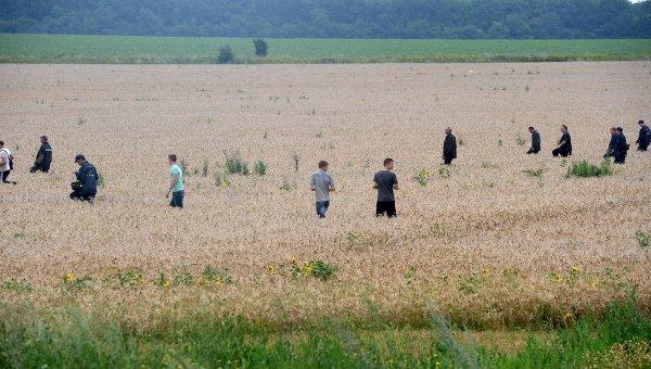 Рекультивация земель на месте падения МН17 пройдет в этом году