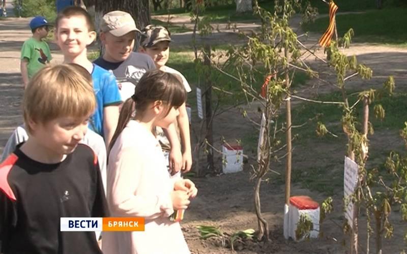 В Брянске появилась аллея вчесть ветеранов Великой Отечественной войны