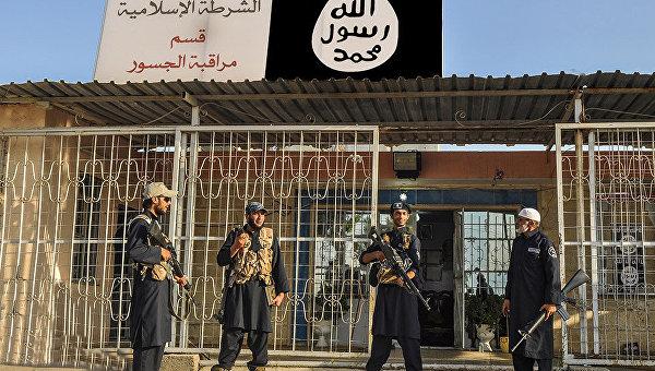 СМИ: в Эль-Фаллудже ИГ казнят тех, кто захочет сдаться властям Ирака