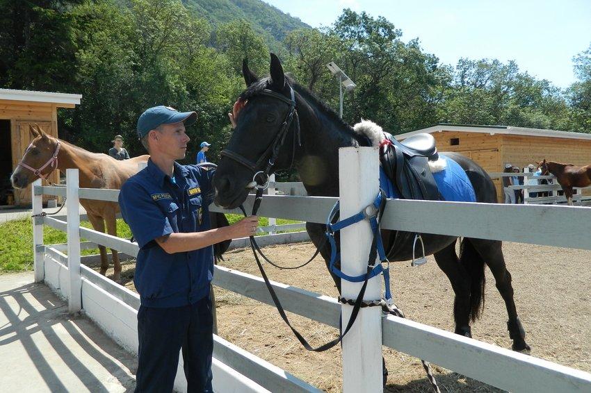 Летом на туристических маршрутах Крыма появятся конные патрули
