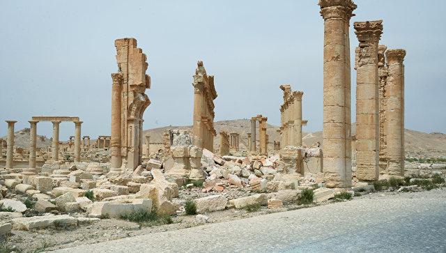 Парцингер: Германия готова обучать сирийских археологов