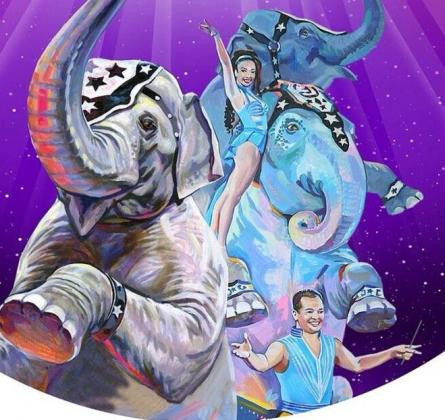 ЦИРК | Шоу слонов братьев Гертнер
