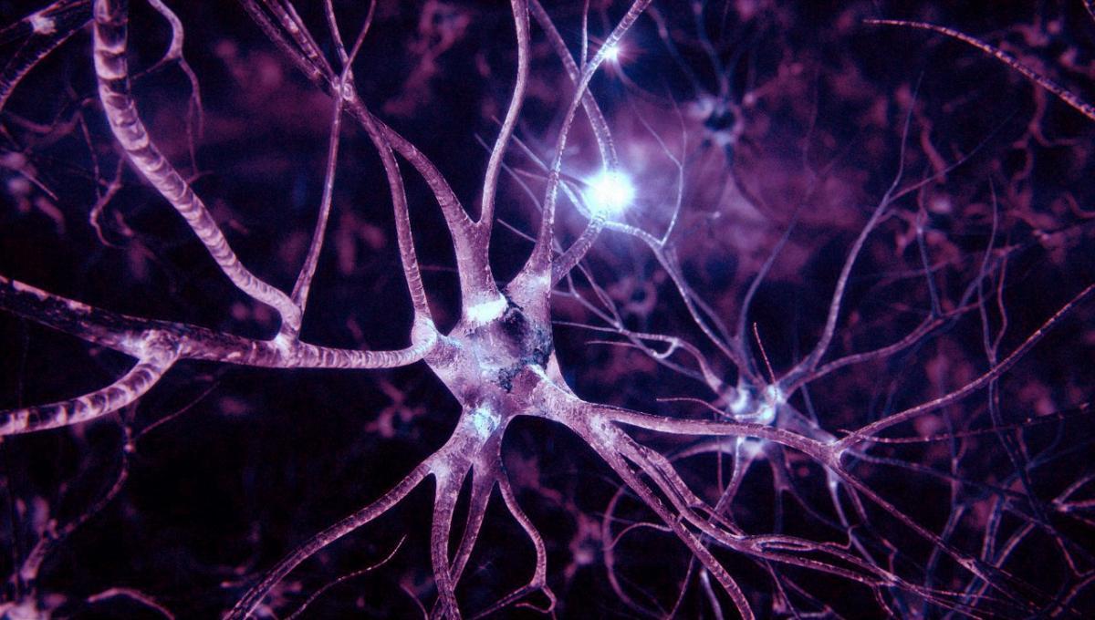 Медики научились восстанавливать нервные клетки