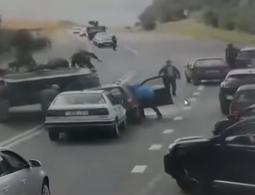 Видео: БМП раздавила легковой автомобиль