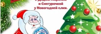Приключение Рождественской елочки
