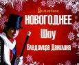 Новогоднее шоу магии от Владимира Данилина