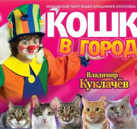 Кошки в городе   Владимир Куклачёв