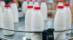 """Продукты с заменителями молочных жиров начнут маркировать """"открыто"""""""