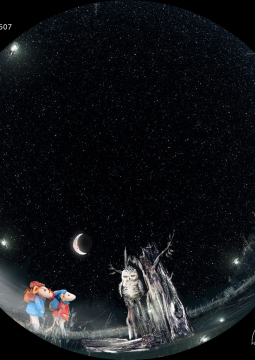 Мышата и Луна
