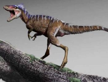 Новая находка палеонтологов объяснила эволюцию огромных тираннозавров
