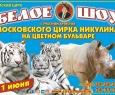 Цирк | Шоу белых тигров