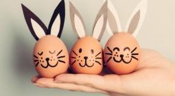 Что произойдет, если есть по 3 яйца каждый день