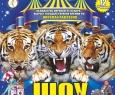 ЦИРК | Шоу тигров