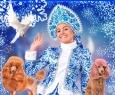 Новогодняя театрально-цирковая сказка