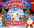 Белые медведи на льду | Цирк на льду АЙСБЕРГ