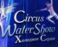 Ёлка на воде Холодное сердце | Цирк на воде