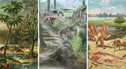 Разнообразие жизни на Земле не изменилось со времен динозавров