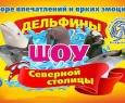 Дельфины Северной Столицы