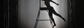 Темные аллеи | Театр драмы Шукшина