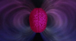 Доказано: некоторые люди могут чувствовать изменения в магнитном поле