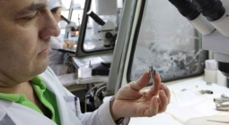В России создали искусственное детское сердце с двухлетним сроком службы