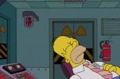 В мозге найден «переключатель», который заставляет животных и людей долго спать