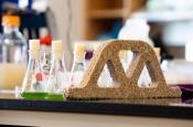 Создан «живой» бетон из бактерий, способный восстанавливаться