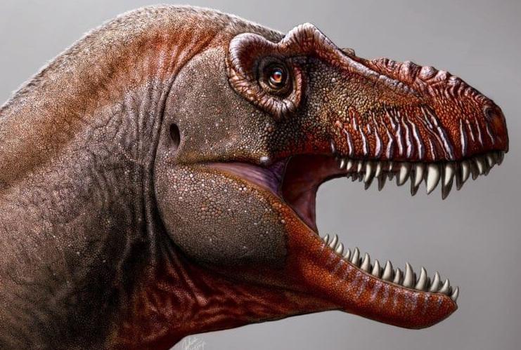 Найдены останки огромного динозавра, который мог съесть кого угодно
