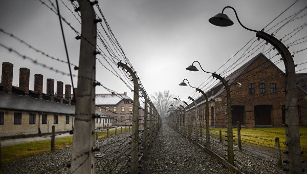 Тысячи человек в Польше принимают участие в Марше жизни в Освенциме