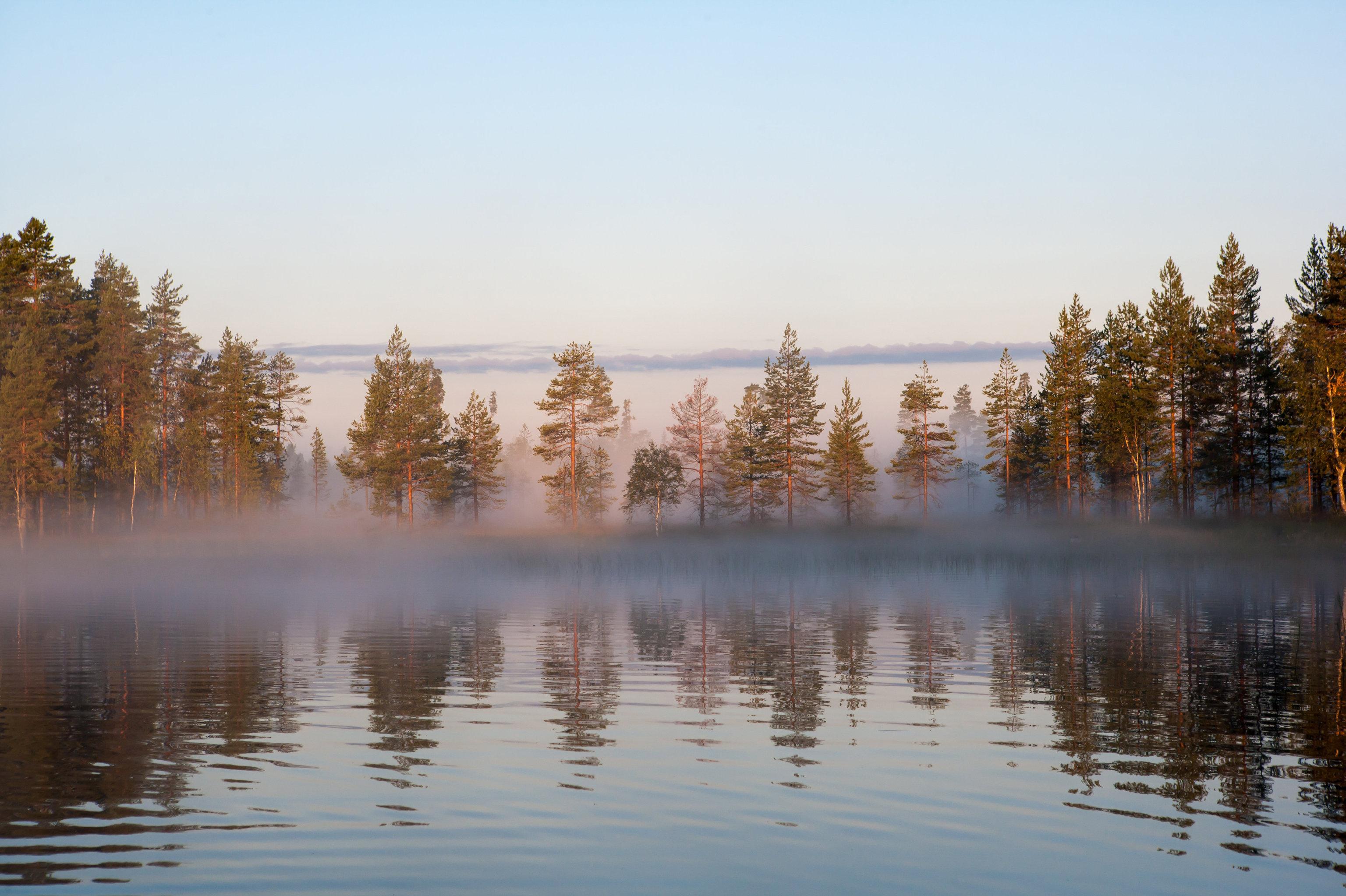 Природа объединяет Россию и Финляндию
