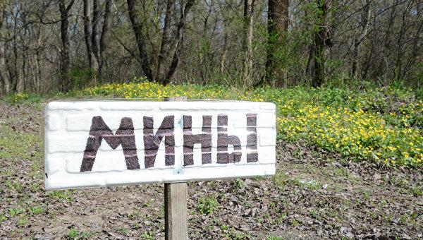 В Донбассе мужчина подорвался на мине, когда вспахивал поле