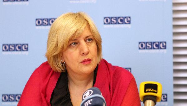 В ОБСЕ призывают Киев разобраться в ситуации с Шустером