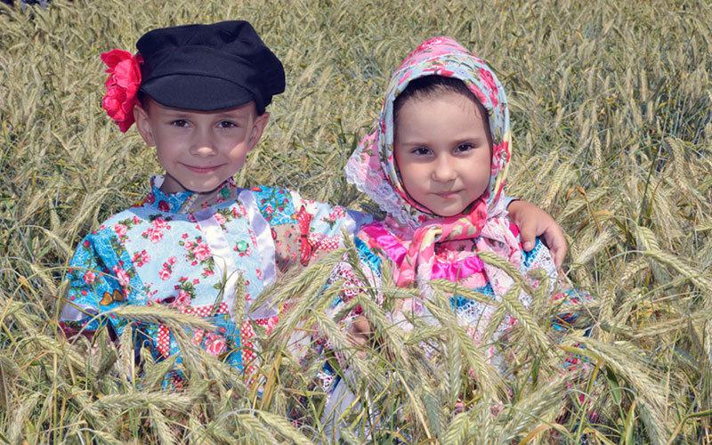 В этом году «День поля» пройдет вВыгоничском районе