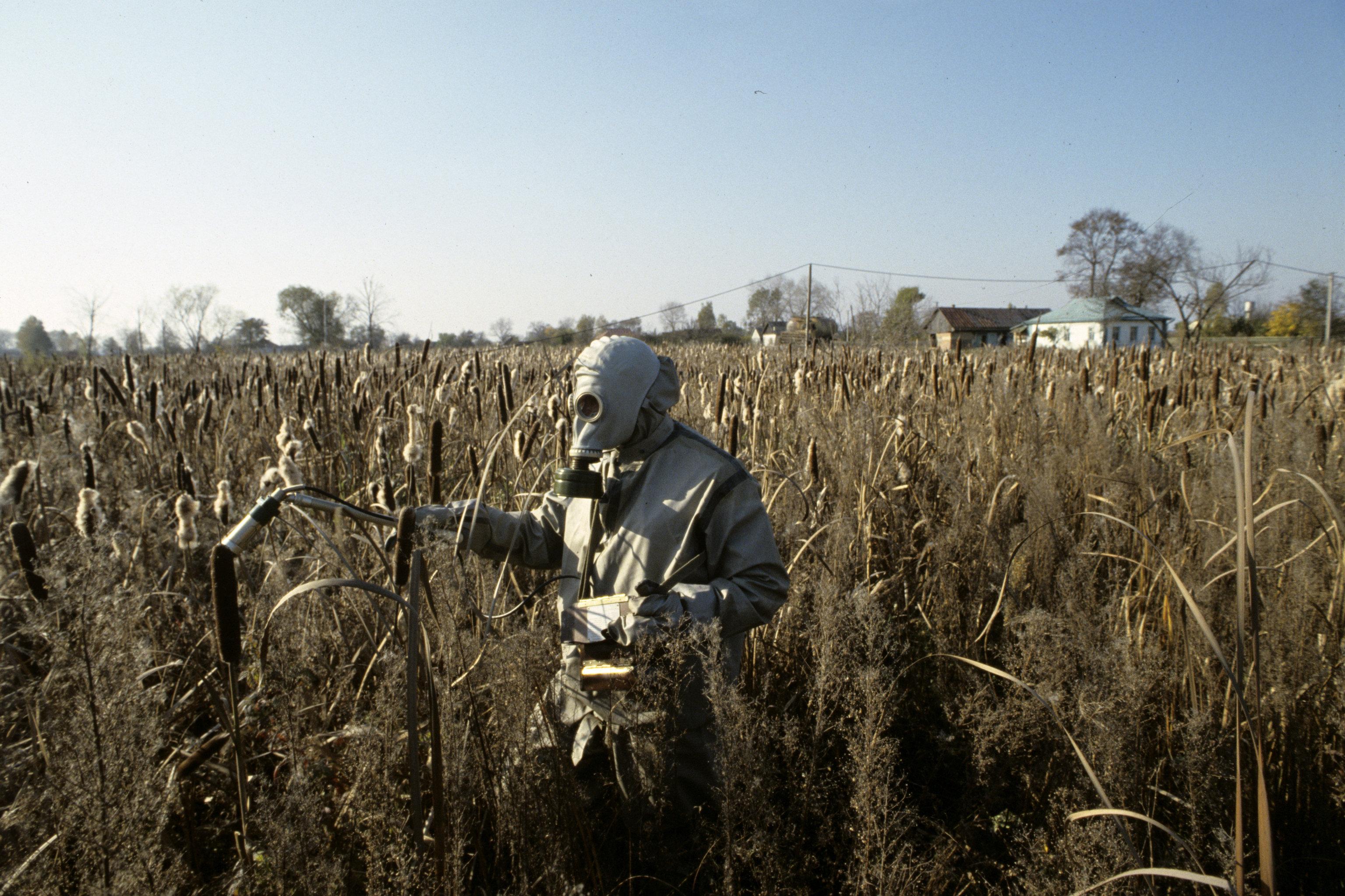 После Чернобыля села вымерли