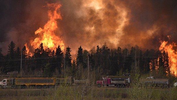 Лесные пожары уничтожили 20% домов в канадском городе Форт Мак-Мюррей