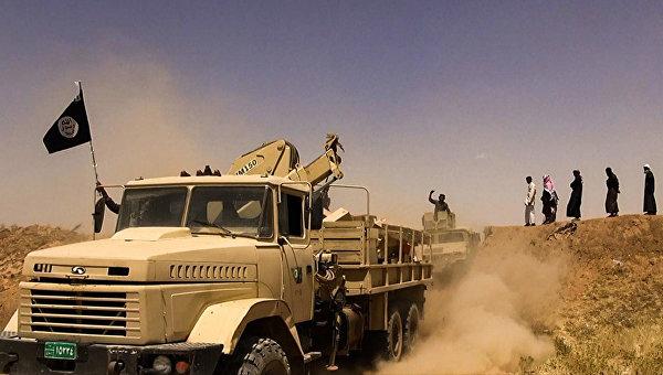 Тысячи жителей остаются в иракской Эль-Фалудже, где идет операция против ИГ