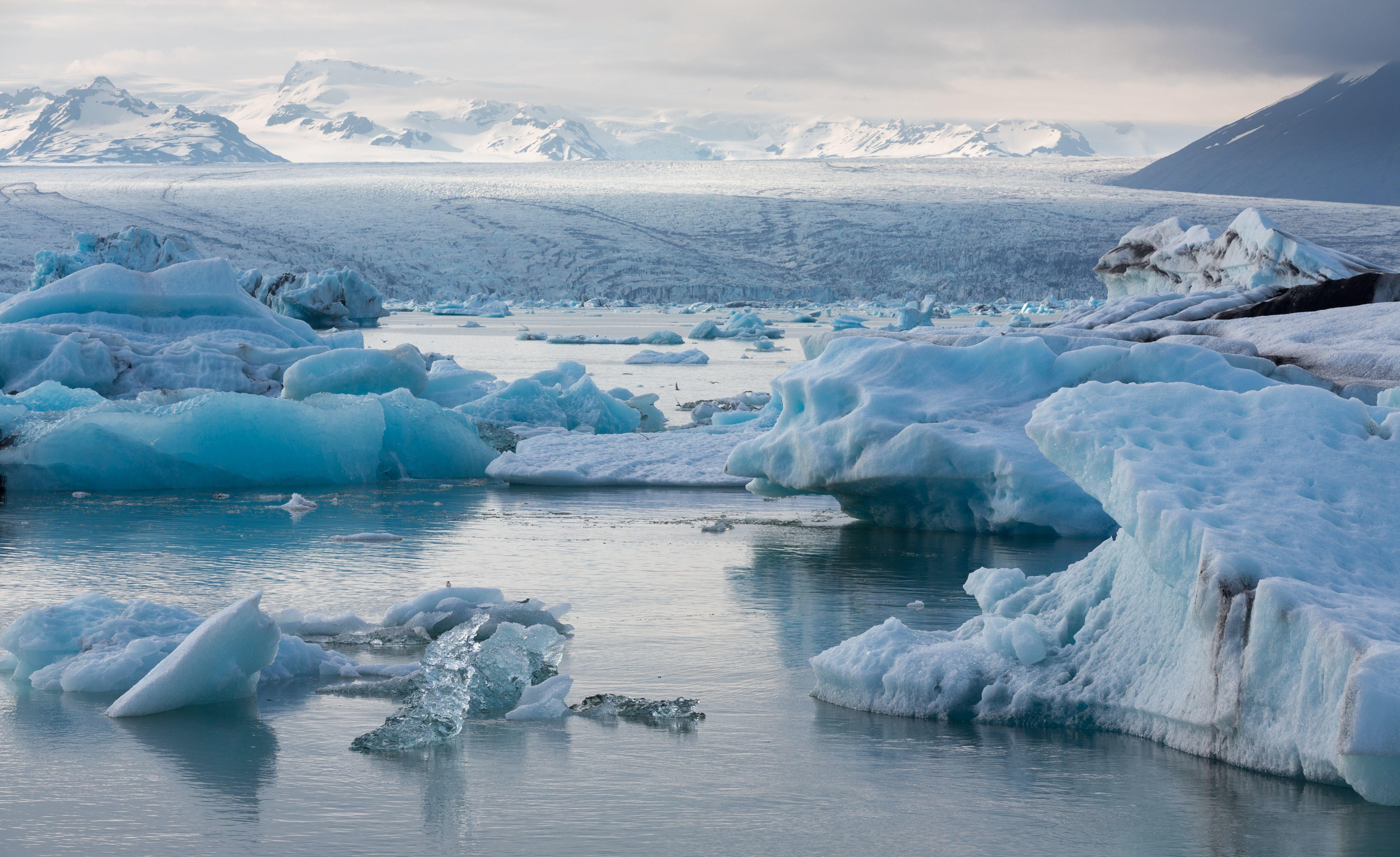 Ученый: Арктические льды дойдут до Мурманска через 5-10 лет