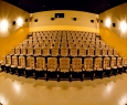Cinema Club-3