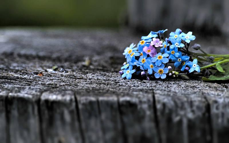 Куда уходит детство: юные брянцы продолжают убегать издома