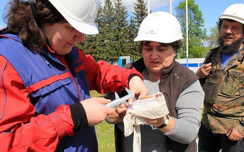 Московские илипецкие зоологи пересчитали брянских сусликов