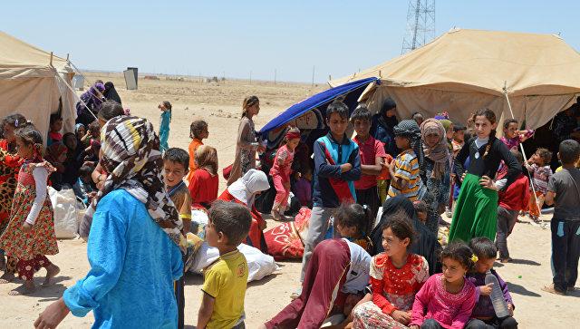 Военные эвакуировали из районов близ Эль-Фаллуджи более 2 тысяч человек