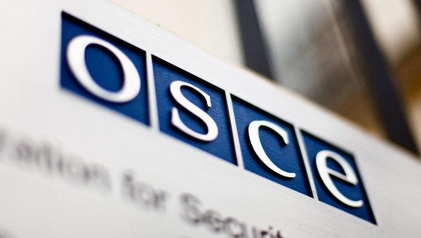 Каспшик: расширение аппарата представителя ОБСЕ не повлияет на мандат по НК