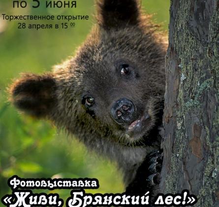 ФОТОВЫСТАВКА «ЖИВИ, БРЯНСКИЙ ЛЕС».