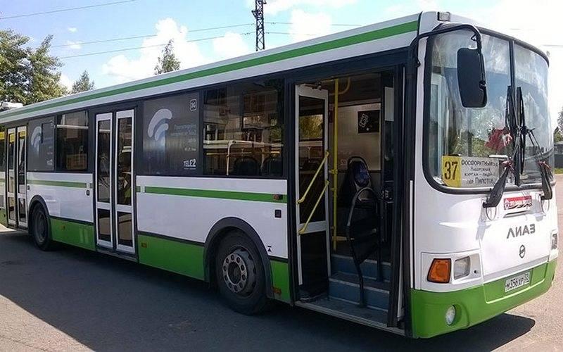 В автобусах Брянска появился бесплатный интернет