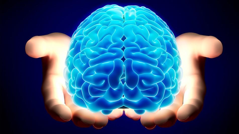 Вирусы помогут учёным бороться со злокачественными опухолями мозга