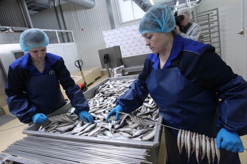 В России выросло число социально-трудовых конфликтов на предприятиях
